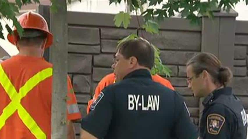 Orleans family plagued by dozens of bylaw complaints