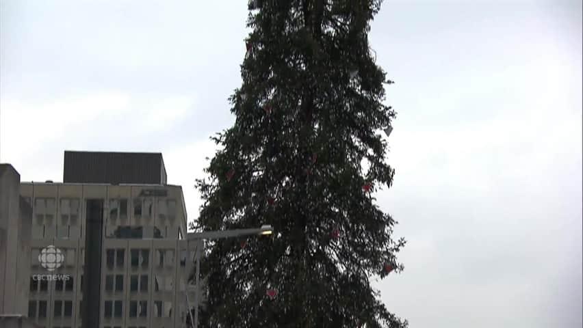 Ugly Christmas Tree.Montrealers React To Ugly Christmas Tree