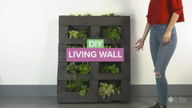CBC Life. DIY Indoor Vertical Garden