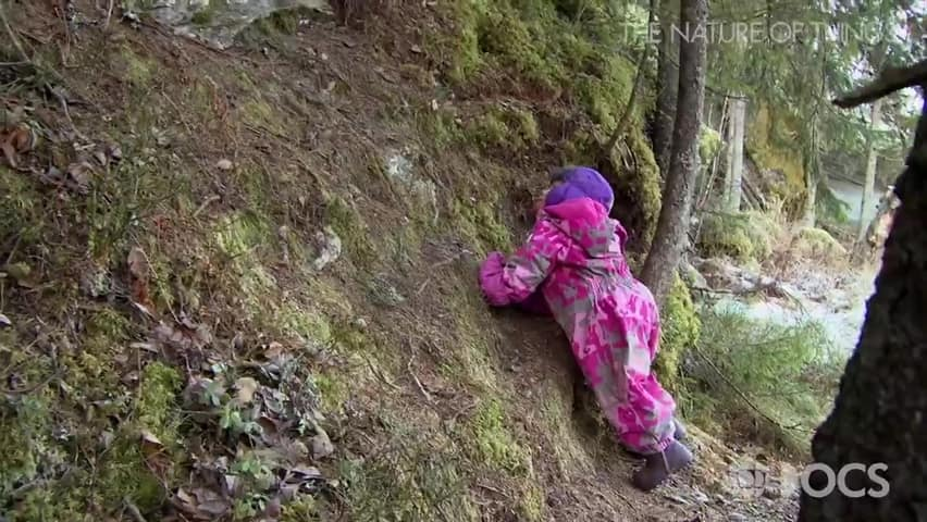 Risky Play Why Children Love It And >> The Power Of Play Risky Play For Children Why We Should Let Kids