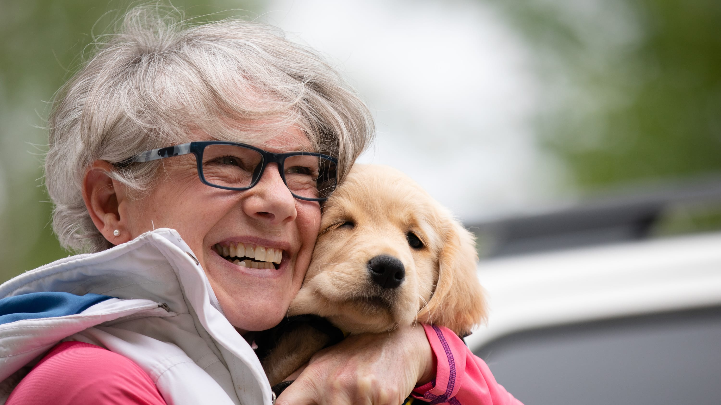 Pandemic isolation sees booming demand for pets — and for businesses that cater to them