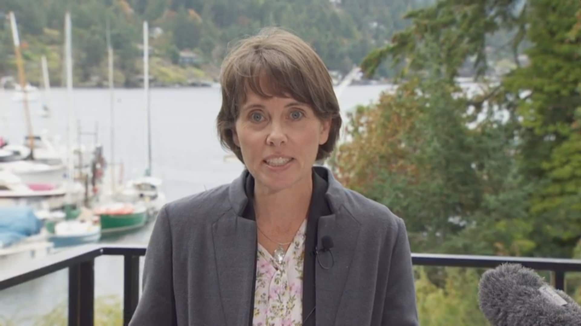 Green Party promises to make BC Ferries a Crown corporation again